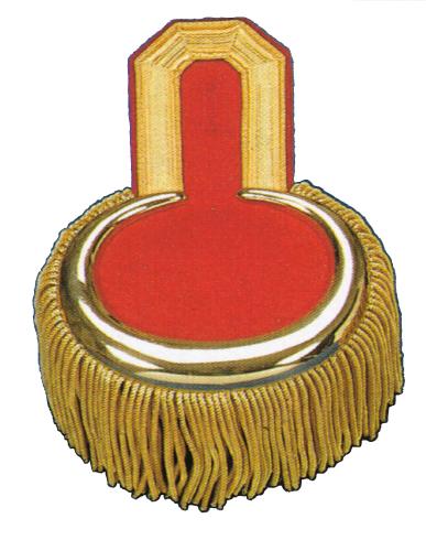 Epauletten mit Knopfloch goldfarbig auf rot mit Bouillonfransen