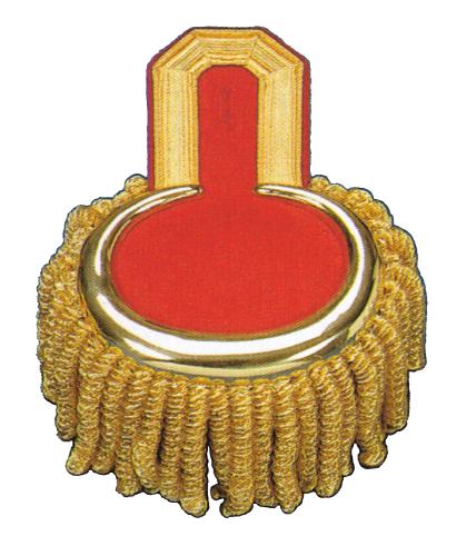 Epauletten mit Knopfloch goldfarbig auf rot mit Bouillonraupen
