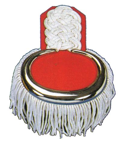 Epauletten mit Metallöse silberfarbig auf rot mit Bouillonfransen